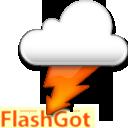 http://software.informaction.com/data/flashgot/logo.png